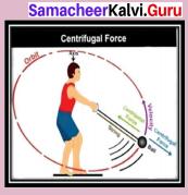 Samacheer Kalvi 9th Science Solutions Chapter 2 Motion 7