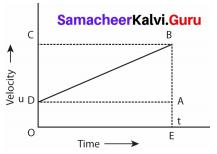 Samacheer Kalvi 9th Science Solutions Chapter 2 Motion 8