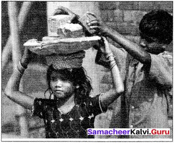 Samacheer Kalvi 10th English Picture Composition Interpretation 1