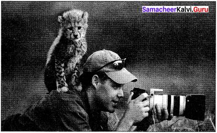 Samacheer Kalvi 10th English Picture Comprehension 2