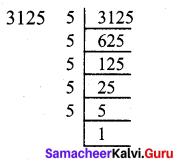 Samacheer Kalvi 7th Maths Solutions Term 2 Chapter 3 Algebra Ex 3.1 4