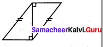 Samacheer Kalvi 7th Maths Solutions Term 2 Chapter 4 Geometry 4.2 15