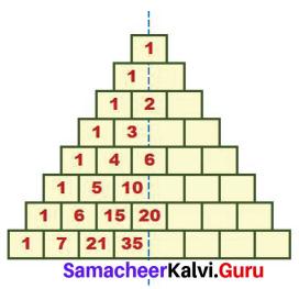Samacheer Kalvi 7th Maths Solutions Term 2 Chapter 5 Information Processing Ex 5.2 5