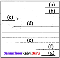 Samacheer Kalvi 9th English Letter Writing 3