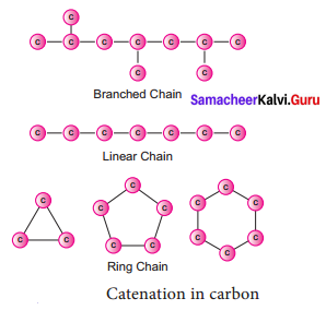 Samacheer Kalvi 9th Science Solutions Chapter 15 Carbon and its Compounds 1