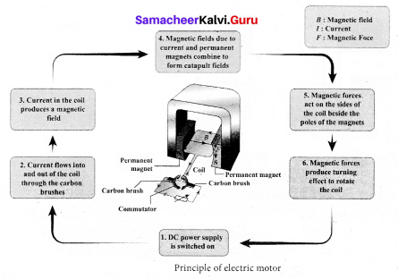 Samacheer Kalvi 9th Science Solutions Chapter 5 Magnetism and Electromagnetism 3