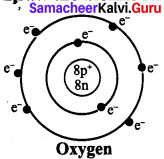 Samacheer Kalvi 7th Science Solutions Term 1 Chapter 4 Atomic Structure image - 3