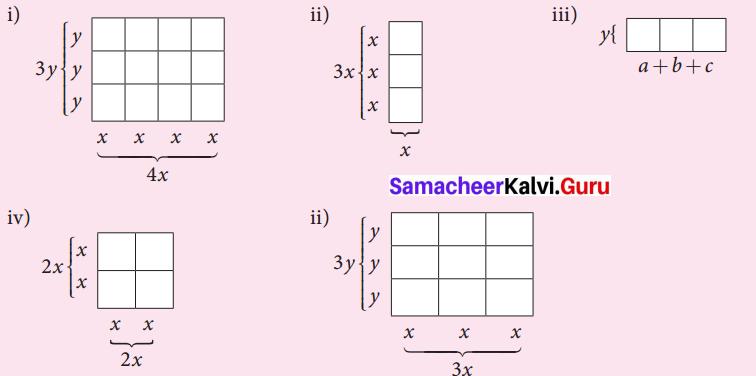 Samacheer Kalvi 7th Maths Solutions Term 3 Chapter 3 Algebra Intext Questions 1