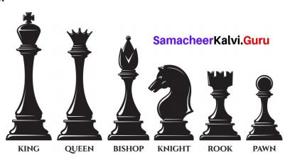 Samacheer Kalvi 7th Maths Solutions Term 3 Chapter 4 Geometry Ex 4.3 2