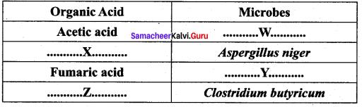 Samacheer Kalvi 12th Bio Zoology Solutions Chapter 8 Microbes in Human Welfare