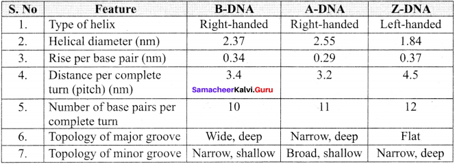 Samacheer Kalvi 11th Bio Botany Solutions Chapter 8 Biomolecules 17