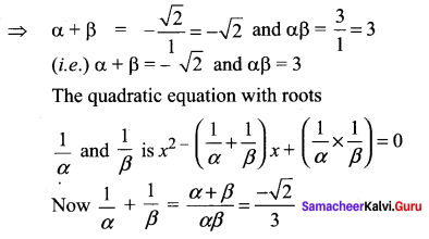Samacheer Kalvi 11th Maths Solutions Chapter 2 Basic Algebra Ex 2.4 3