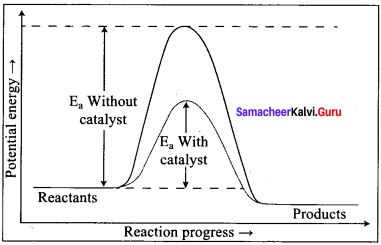Samacheer Kalvi 12th Chemistry Solutions Chapter 7 Chemical Kinetics-32