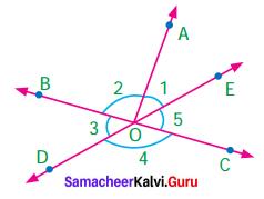 Samacheer Kalvi 7th Maths Solutions Term 1 Chapter 5 Geometry Ex 5.6 10