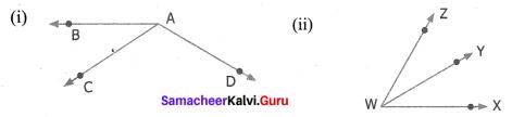 Samacheer Kalvi 7th Maths Solutions Term 1 Chapter 5 Geometry Intext Questions 85