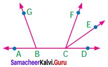 Samacheer Kalvi 7th Maths Term 1 Chapter 5 Geometry Ex 5.1 1