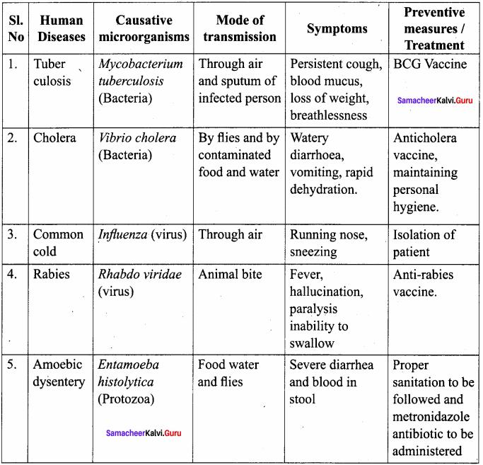 Samacheer Kalvi 8th Science Solutions Term 1 Chapter 6 Micro Organisms 4