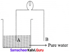 Samacheer Kalvi 8th Science Solutions Term 2 Chapter 2 Electricity 11