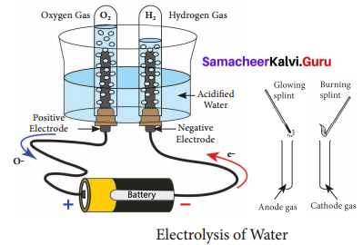 Samacheer Kalvi 8th Science Solutions Term 3 Chapter 4 Water
