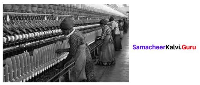 Samacheer Kalvi 8th Tamil Solutions Chapter 6.3 கொங்குநாட்டு வணிகம் 2
