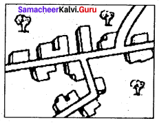 Samacheer Kalvi 9th Social Science Geography Solutions Chapter 6 Man and Environment 85
