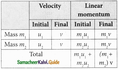 Tamil Nadu 11th Physics Model Question Paper 3 English Medium img 16