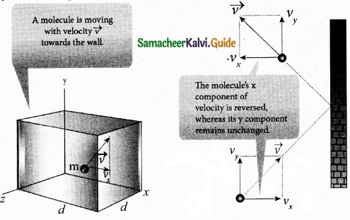 Tamil Nadu 11th Physics Model Question Paper 3 English Medium img 18