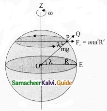 Tamil Nadu 11th Physics Model Question Paper 4 English Medium img 7
