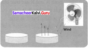 Samacheer Kalvi 7th Science Solutions Term 2 Chapter 3 Changes Around Us image -6
