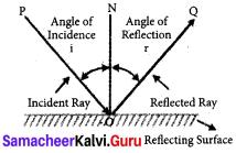Samacheer Kalvi 7th Science Solutions Term 3 Chapter 1 Light image - 1