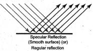 Samacheer Kalvi 7th Science Solutions Term 3 Chapter 1 Light image - 13