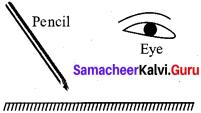 Samacheer Kalvi 7th Science Solutions Term 3 Chapter 1 Light image - 2
