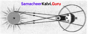 Samacheer Kalvi 7th Science Solutions Term 3 Chapter 1 Light image - 20