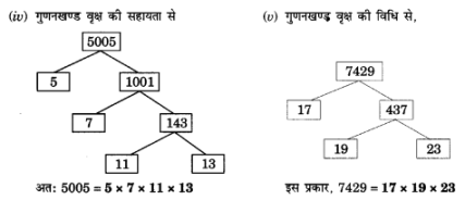 UP Board Solutions for Class 10 Maths Chapter 1 Real Numbers img 10