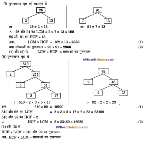 UP Board Solutions for Class 10 Maths Chapter 1 Real Numbers img 11