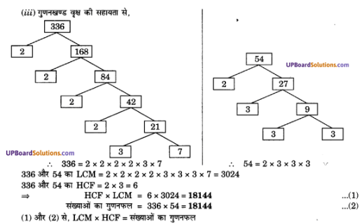 UP Board Solutions for Class 10 Maths Chapter 1 Real Numbers img 12