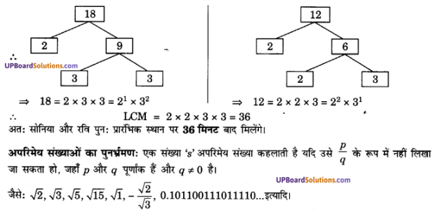 UP Board Solutions for Class 10 Maths Chapter 1 Real Numbers img 17