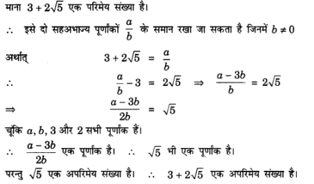 UP Board Solutions for Class 10 Maths Chapter 1 Real Numbers img 19